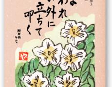 祖母の思い出をカタチにして残したくて「本」に。いつもページを開いては祖母を想い出します。